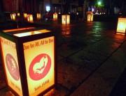 灯りの道8−2