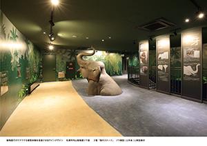 札幌市円山動物園ゾウ舎